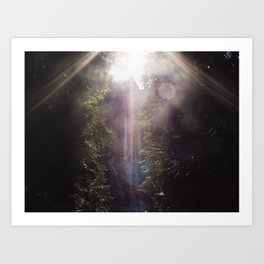 Fragments of Light Art Print