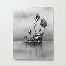 Islet Metal Print
