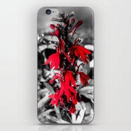 Cardinal Flower iPhone Skin