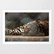 Lazy Kitten Art Print