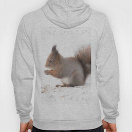 Squirrel And Lunch Pause Winter Scene #decor #society6 #buyart Hoody