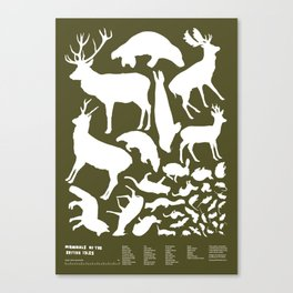 Mammals of the British Isles Canvas Print
