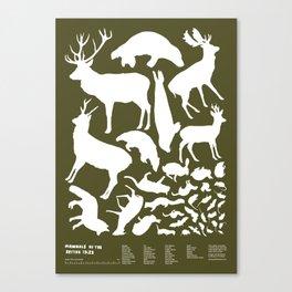 Mammals of the British Isles Canvas Print