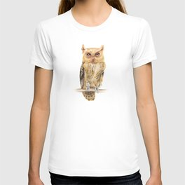 Animals | Owl Watercolour Print | Philippine Scops Owl | Painting T-shirt