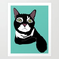 Alaster the Green Eyed Cat - Color Art Print