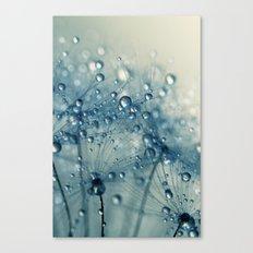 Dandy Blue Shower Canvas Print