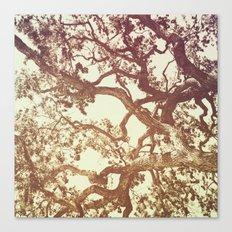 WOODEN WALLPAPER Canvas Print
