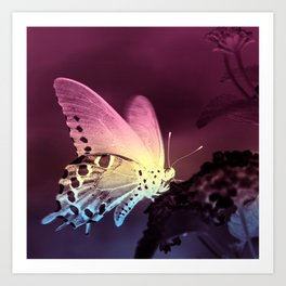 Swallowtail Gradient Art Print
