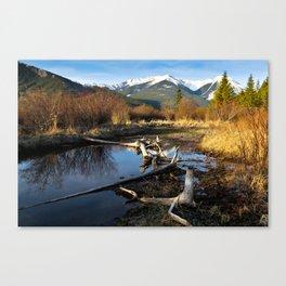 Vermilion Lakes Autumn - Banff Canvas Print