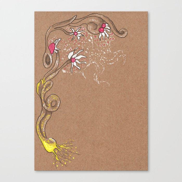 Moon pollination Canvas Print