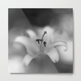 Botanica Obscura #8 Metal Print