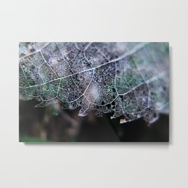 Nature's Lace Metal Print