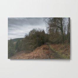 Along the Ridge II Metal Print