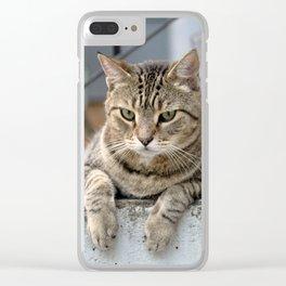 Waitin' Clear iPhone Case