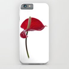 Anthurium - 2 Slim Case iPhone 6s