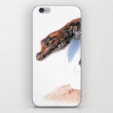 to life iPhone & iPod Skin