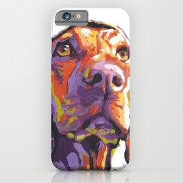 Vizsla Dog Portrait bright colorful fun Pop Art by LEA iPhone Case
