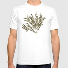 Seaweed Plant SMALL Mens Fitted Tee White