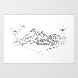 Shasta Poppies Art Print