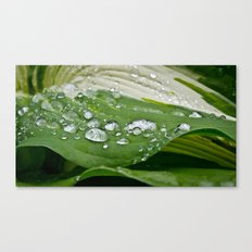 Drop. Canvas Print