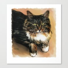Brown cat Canvas Print