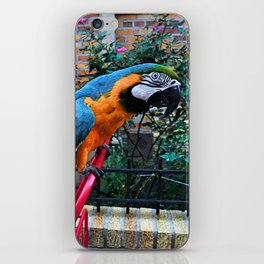 Exotica Urbanization iPhone Skin