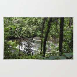 Abrams Creek Rug