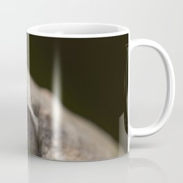 Eyes on Nature Coffee Mug