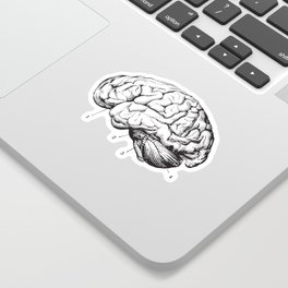 Sketches Stickers Society6