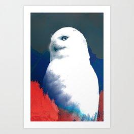 August Owl Art Print