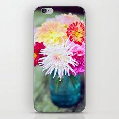 Darling Dahlias II iPhone & iPod Skin