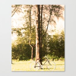 Gone Cycling Canvas Print