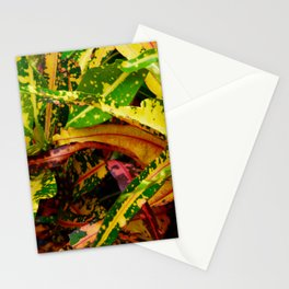 Tropical Croton Plant Stationery Cards