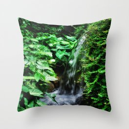 Dreamy Falls Throw Pillow