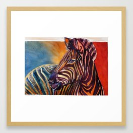 The zebra Framed Art Print