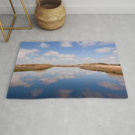 Reflections On The Great Marsh Rug