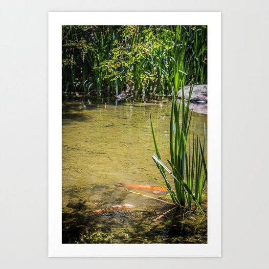 Pond Side  Art Print