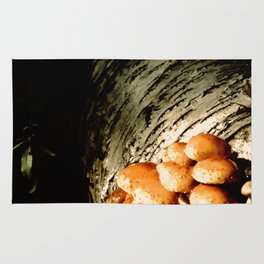 The mushrooms and the white birch Rug