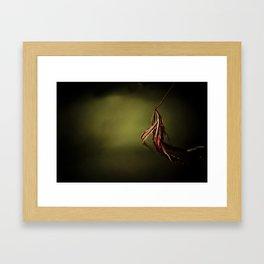 Autumn .. Framed Art Print