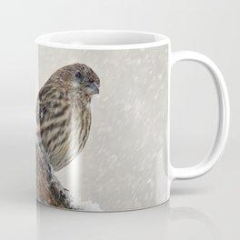 Facing the Storm (House Finch) Coffee Mug