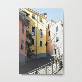 Little Homes. Metal Print