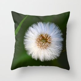 Softness Dandelion Throw Pillow