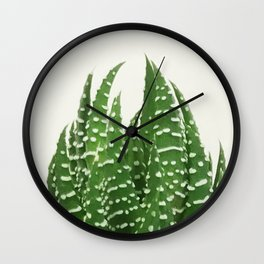 zebra haworthia Wall Clock