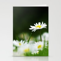 daisies Stationery Cards featuring Daisies by Nathalie Photos