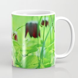 Chequered lily Fritillaria Meleagris Coffee Mug