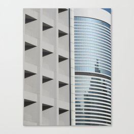 Form & Function Canvas Print