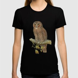 Lonely Owl Realistic Painting T-shirt