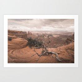Mesa Arch Canyonland Art Print