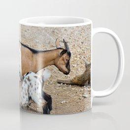 Goat feeds her goatlings, outdoor shooting in good weather Coffee Mug