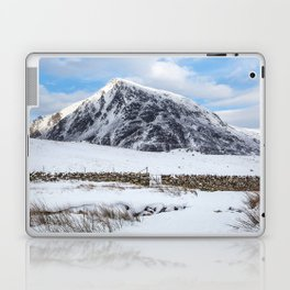 Pen yr Ole Wen Laptop & iPad Skin